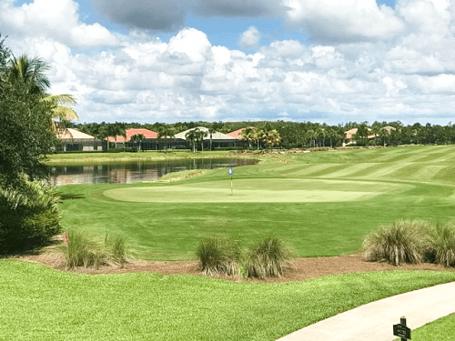 Plantation Golf