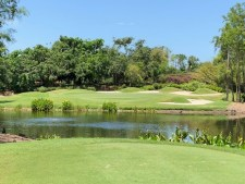 Grey Oaks Surrounded by Premium Golf Homes
