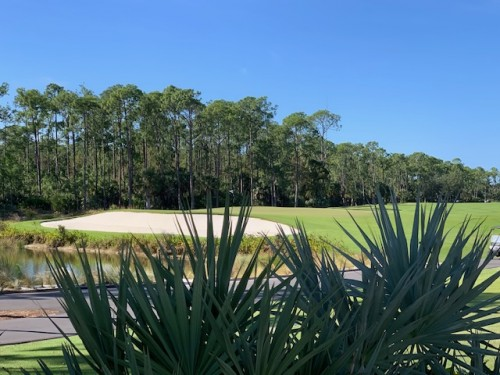 Naples gated golf community
