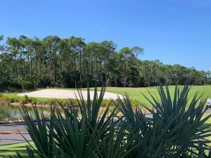 Mediterra Golf Club