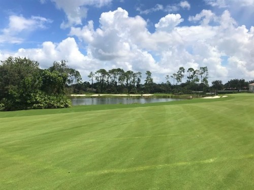 Best Naples Golf Clubs