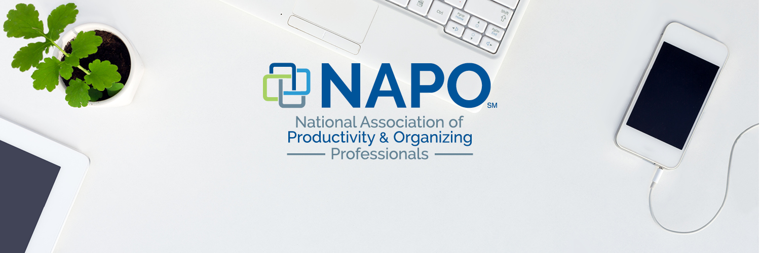 Strategic Plan and Annual Operations Update from NAPO President, Ellen Delap, CPO