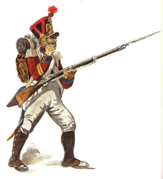 Image result for swiss under napoleon