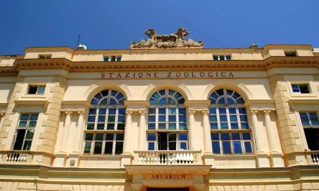 Stazione Zoologica Anton Dohrn, l'Acquario di Napoli