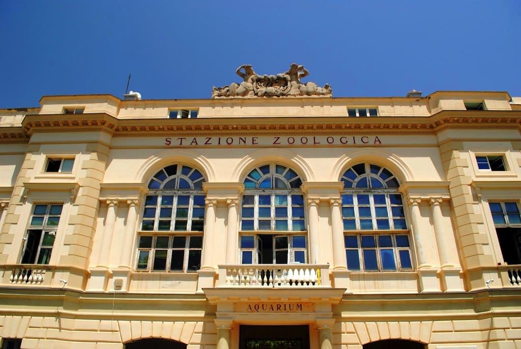 Stazione Zoologica Napoli