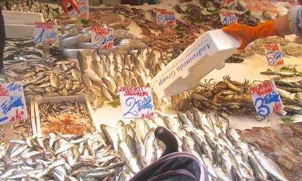 I cinque mercati del pesce più interessanti di Napoli