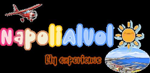 logo utilizzato nel sito www.napolialvolo.it