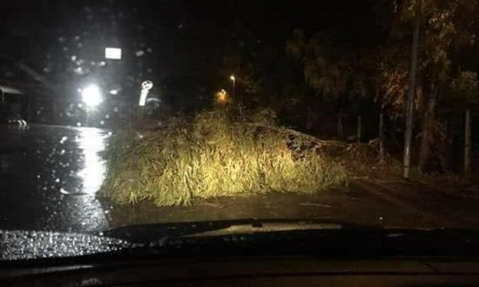 Allerta meteo: danni a Napoli e in tutta la regione