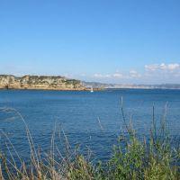 isola-pennata-a-miseno