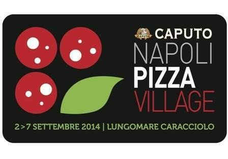 logo_NPV-2014