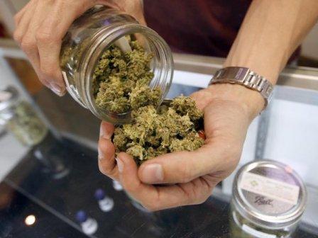 Cannabis.terapeutica