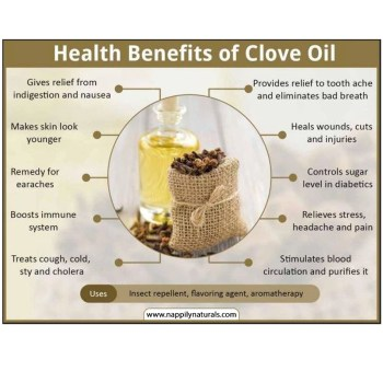 Clove oil facts essential oil