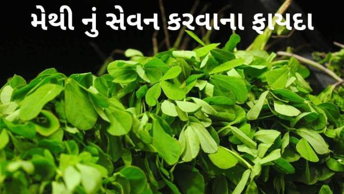 Methi na fayda in Gujarati - મેથી ના ફાયદા - Health benefits of Methi in Gujarati - મેથી ના ફાયદા