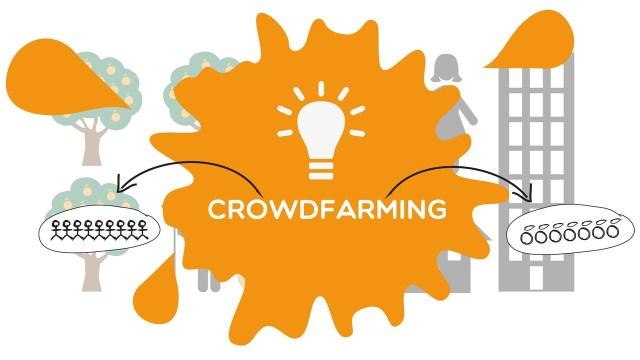 Crowdfarming® splash