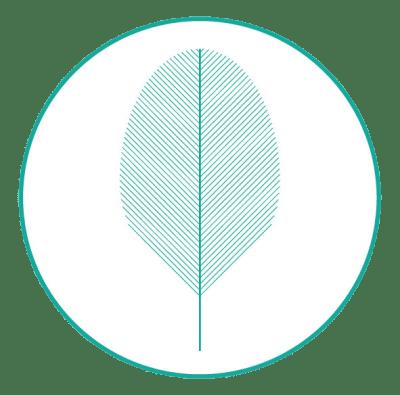 20171127 logo cf circulo