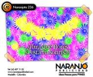 Naranjota236