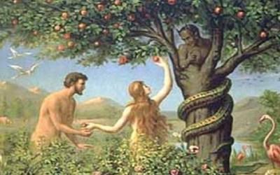 Leluhur Umat Manusia adalah Adam dan Hawa? Non Sense