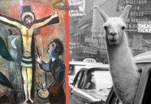Il grande Chagall ospite al Museo Diocesano di Milano assieme a Inge Morath, autrice dello scatto con il lama nel taxi americano