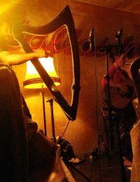 IMG_7484 Live in Kallasch Berlin 2014
