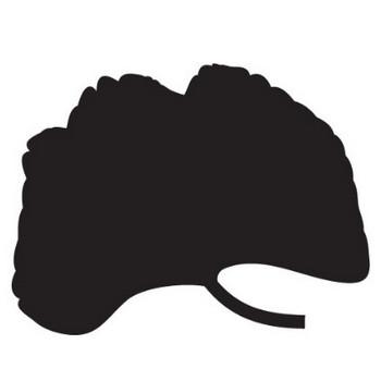 葉っぱや草木のイラスト・画像・フリー素材/白黒No.344『イチョウ』