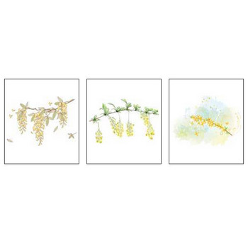 その他の花イラスト・画像「ア行~サ行」/無料のフリー素材集【百花繚乱】