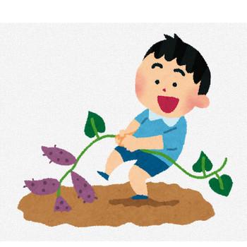 芋掘りのイラスト | かわいいフリー素材集 いらすとや
