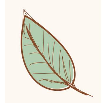 【秋の紅葉】落ち葉(葉っぱ)のイラスト | 商用フリー(無料)のイラスト素材なら「イラストマンション」