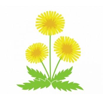 タンポポが咲いているイラスト - 無料イラストのIMT 商用OK、加工OK