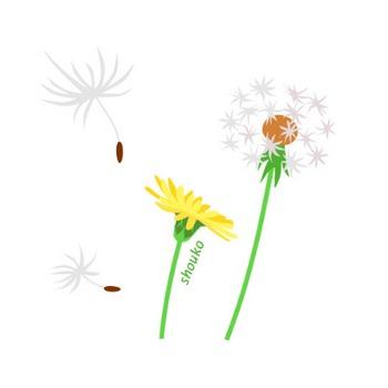花のイラスト素材 / たんぽぽ 無料イラスト素材