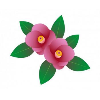 ピンク色の椿のイラスト素材 | イラスト無料・かわいいテンプレート