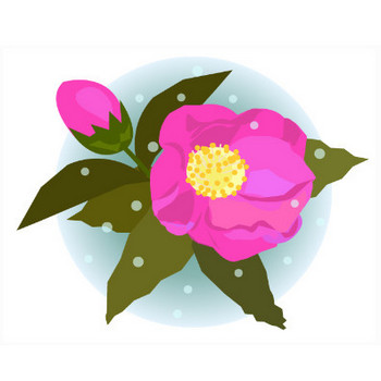 寒椿のイラスト | イラスト素材パラダイス 商用利用無料のイラスト素材