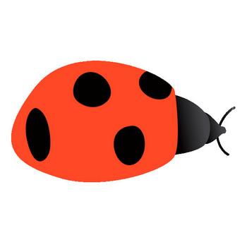 054 てんとう虫(七星瓢虫)/テントウムシ(ナナホシテントウ)/Ladybug.gif - 素材庭園(フリーイラスト素材集) ~花・動物・食べ物・人物・雑貨他
