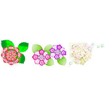 素材屋じゅんのあじさい紫陽花イラスト素材背景素材フリー素材アイコン・アジサイ素材・画像絵・無料