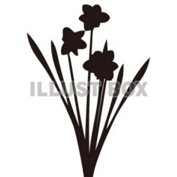 無料イラスト 【シルエット】植物シリーズ 花 01 水仙