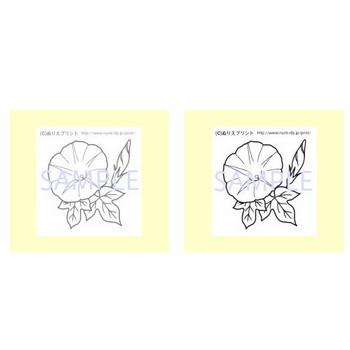 ぬりえ/無料/夏の花1/花の塗り絵