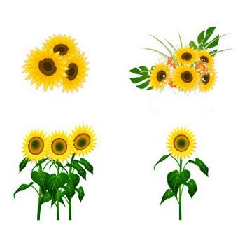 無料素材の『季節・行事素材のイラスト市場』夏素材・ひまわりのイラスト