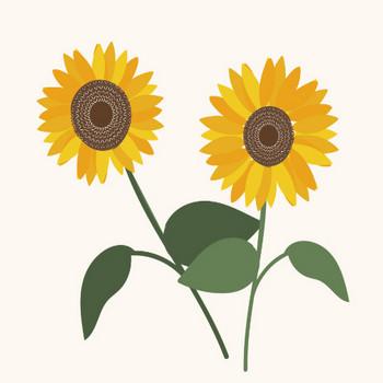 【夏の花】ひまわり(ヒマワリ)のイラスト | 商用フリー(無料)のイラスト素材なら「イラストマンション」