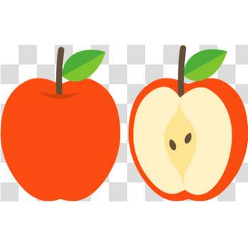 丸ごとのリンゴとカット面のリンゴのフリーイラスト素材