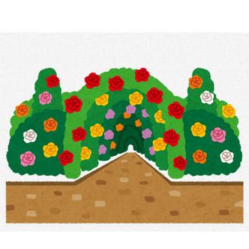 バラ園のイラスト   かわいいフリー素材集 いらすとや
