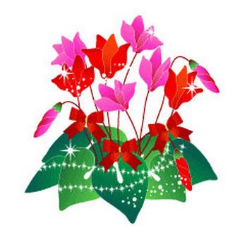 冬の花/シクラメン/無料イラスト素材 - 花/素材/無料/イラスト/素材【花素材mayflower】モバイル/WEB/SNS
