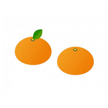みかん・果物イラスト素材 | イラスト無料・かわいいテンプレート