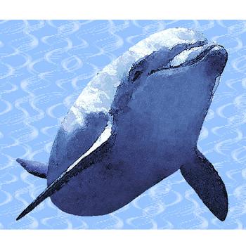 イルカのイラストフリー素材集(条件付)