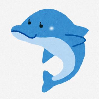 イルカのイラスト | かわいいフリー素材集 いらすとや