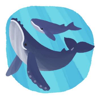 クジラ親子Bの無料素材 - イラスト沖縄(おきなわ)
