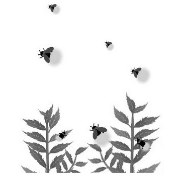 ホタル(蛍)夏のイラスト素材 無料テンプレート