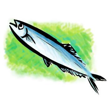秋のサンマの筆描きイラスト秋刀魚墨絵 | 素材屋きんぎょ