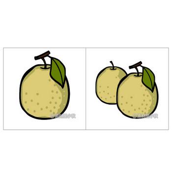 梨のイラスト | 素材屋小秋