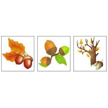 秋のイラスト2「花、植物、動物、食べ物など」/無料のフリー素材集【花鳥風月】