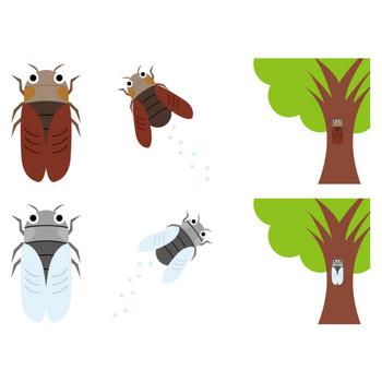 [フリーイラスト] 6種類のセミのセットでアハ体験 - GAHAG | 著作権フリー写真・イラスト素材集