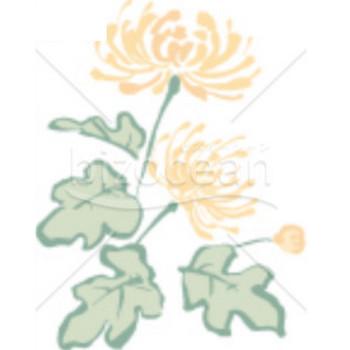 管物菊の喪中イラスト(カラー)|テンプレートのダウンロードは【書式の王様】